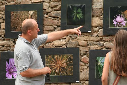 Bámészkodók a Művészetek Völgye fesztiválon