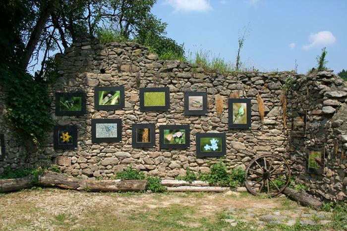Fotókiállítás a hátsó kőfalon.